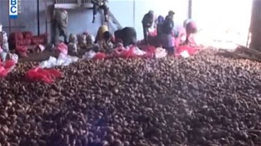 REPORT: Egyptian potatoes to reach Lebanese market amid protests