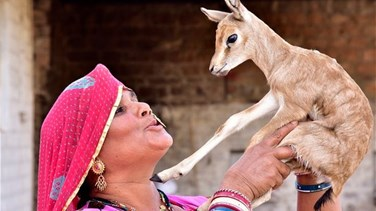 [PHOTOS] Animal-Loving Mum Breast Feeds Orphaned Deer Alongside Her Own Baby Son