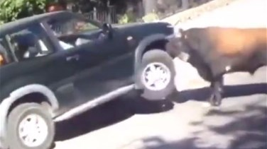 Lebanon News - VIDEO: Horrifying Moment A Bull Attacks Vehicle Full Of People