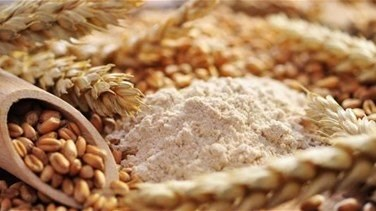 Lebanon News - World Food Program to send 50,000 T of wheat flour to Lebanon - UN