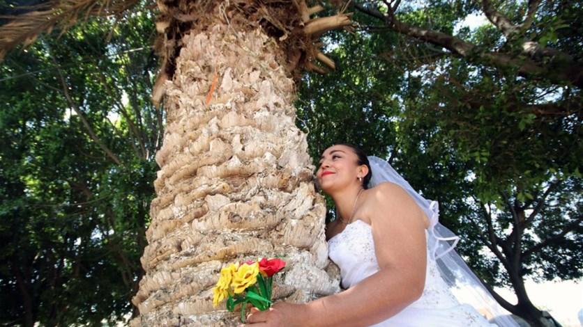 0d89c4d51 بالصور- في المكسيك... نساء عازبات يتزوّجن الأشجار في حفلٍ جماعي. LBCI News  Lebanon