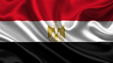 Egypt rejects media accusations security forces behind killing...