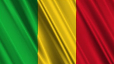 UN Security Council pushes peace deal implementation in Mali