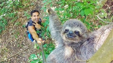 Man Wins the Internet with 'Sloth Selfie'
