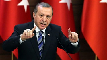 Turkey's Erdogan says wants to work with US-led coalition on...