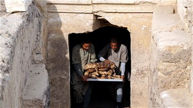 Ancient Egyptian tombs yield rare find of mummified scarab...